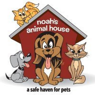 Noah's Animal House_400x400